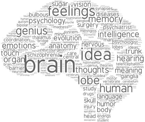 Imagen del cerebro relacionando nteligencia Emocional en la Seguridad y Salud en el trabajo
