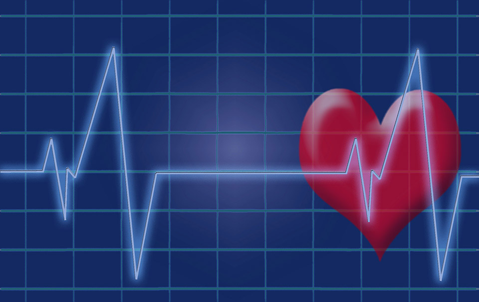 Corazón representando a las enfermedades cardiovasculares